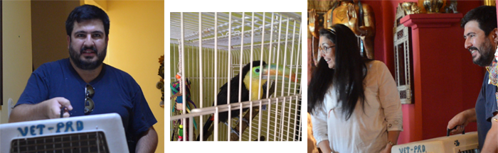 Veterinarian Juan Pablo Calderon arrives at the Self Ascension Sanctuary with the amazing rescue Toucan, Ptah.